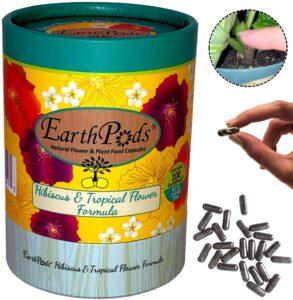 earth pots hibiscus fertilizer