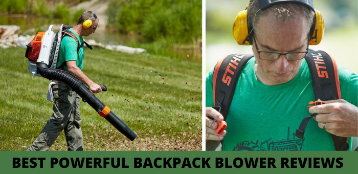BEST POWERFUL BACKPACK BLOWER REVIEWS