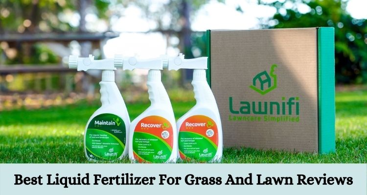 Best Liquid Fertilizer For Grass And Lawn