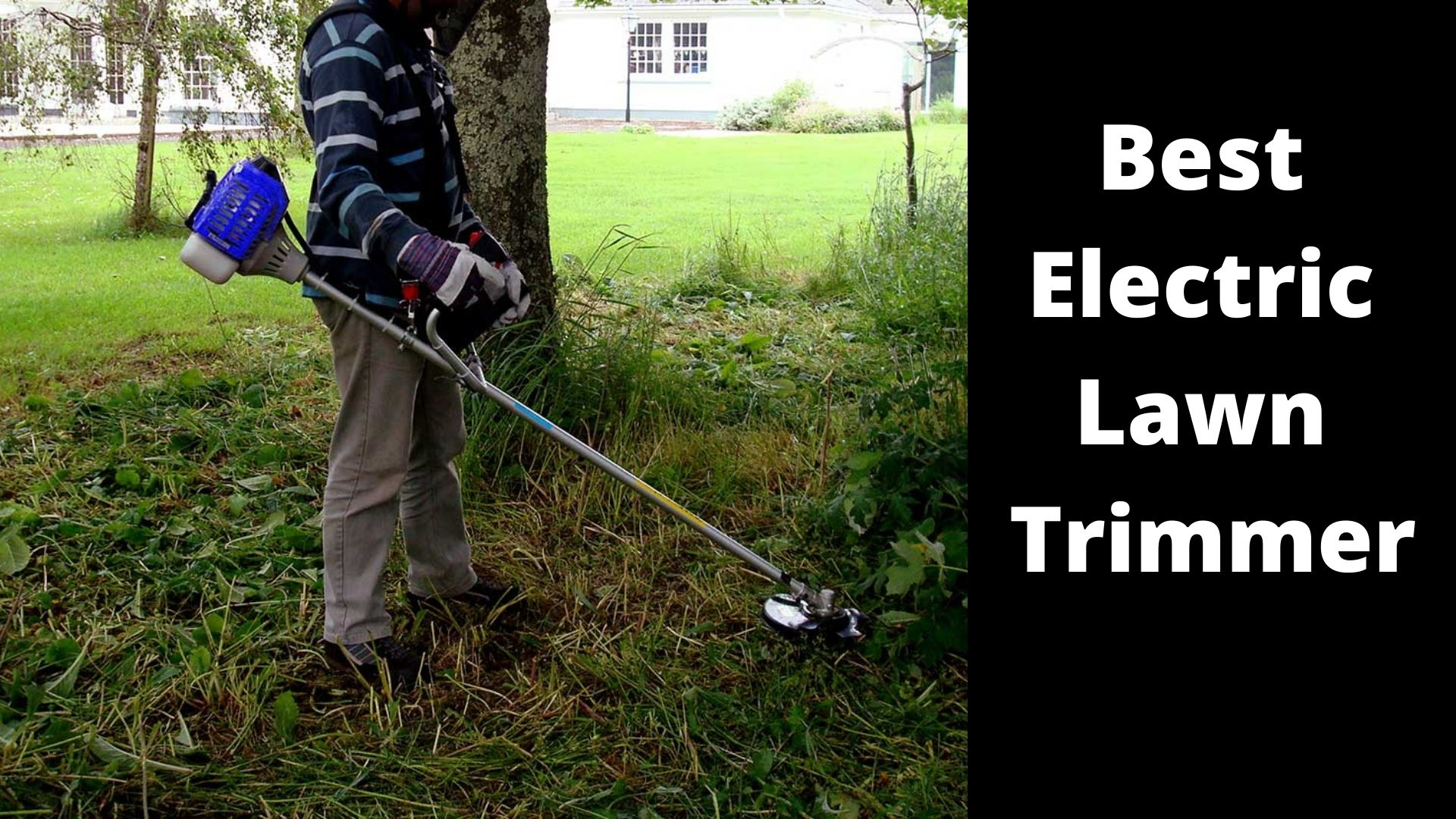 Best Electric Lawn Trimmer